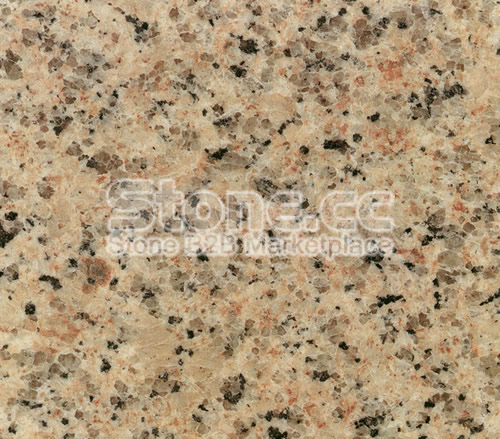 Bfi, Carbon Limestone Landfill