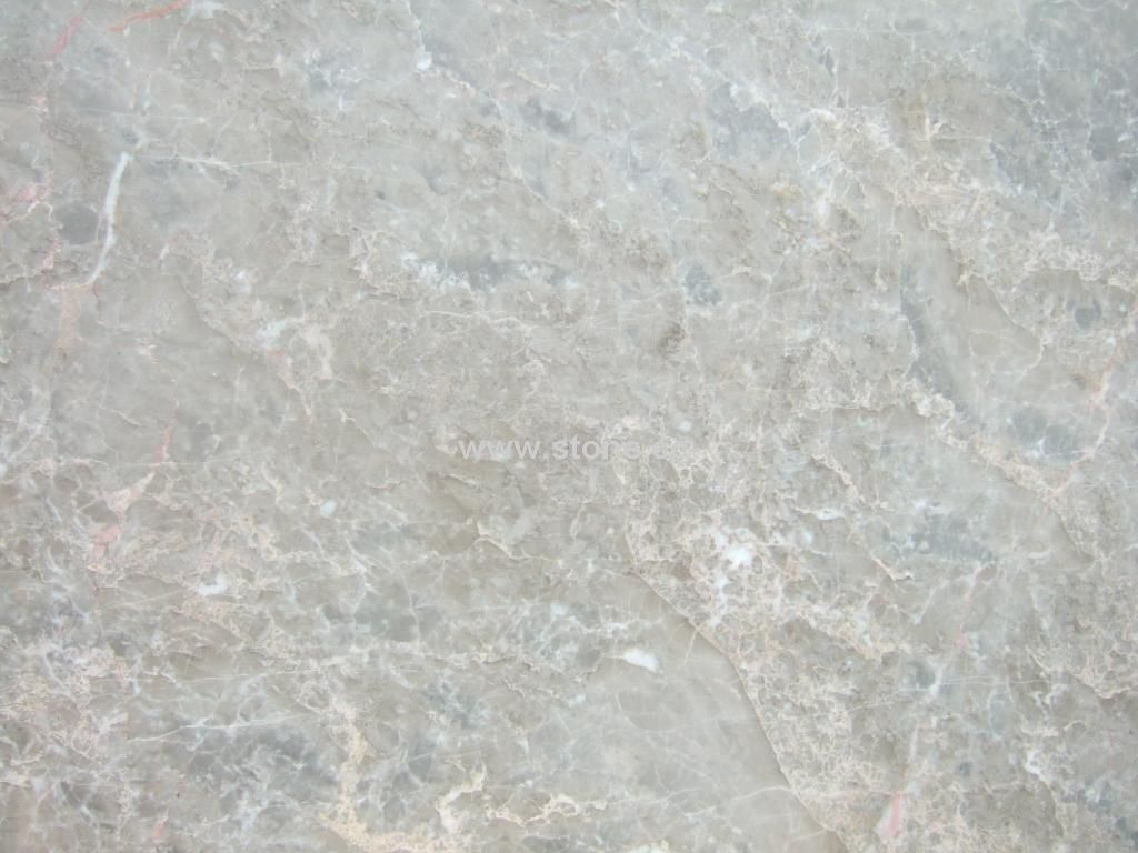 Marble Stone : Gray Marble - Detailed info for Chino Gray Marble ,Chino Gray Marble ...