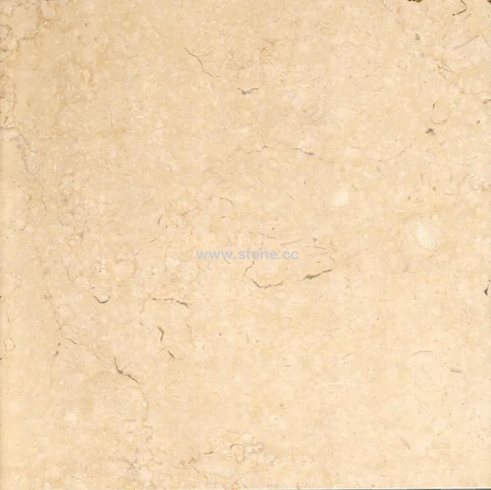 Marble Tiles Product : Marble tile galala detailed info for