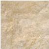 Lion - Desert Gold Limestone